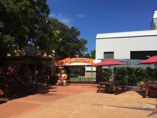 Yandina, Australia: Ginger tour