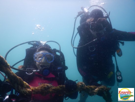 Rosarito Ocean Sports : That was a great dive!!!!
