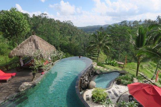 Dara Ayu Villas & Spa: Main pool