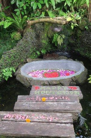 Dara Ayu Villas & Spa: Bath