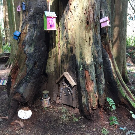 Surrey, Canada: Lovely visit to this park, my grand daughters loved the Fairy theme in the woods....