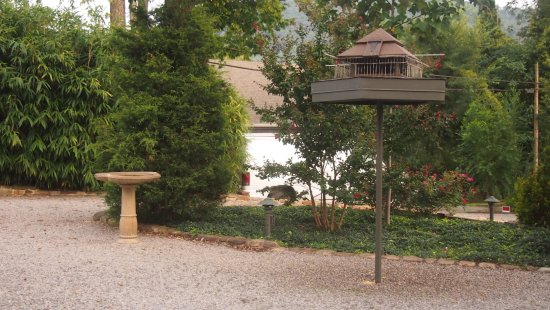 Black Lantern Inn: bird and squirrel feeder