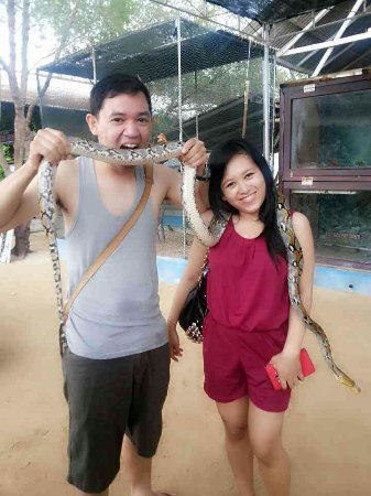 Bali Turtle Conservatory: 1406616141011_large.jpg