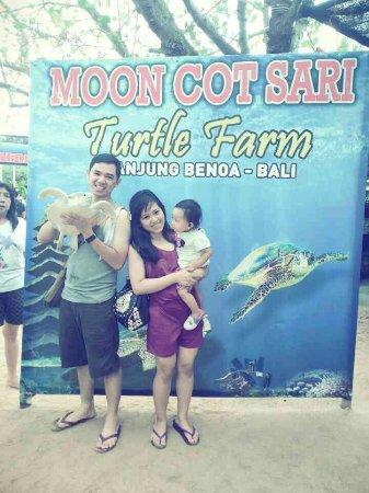 Bali Turtle Conservatory: 1406616114767_large.jpg
