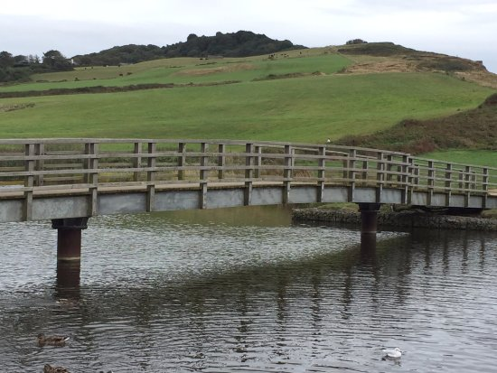Charmouth, UK: Bridge over the river