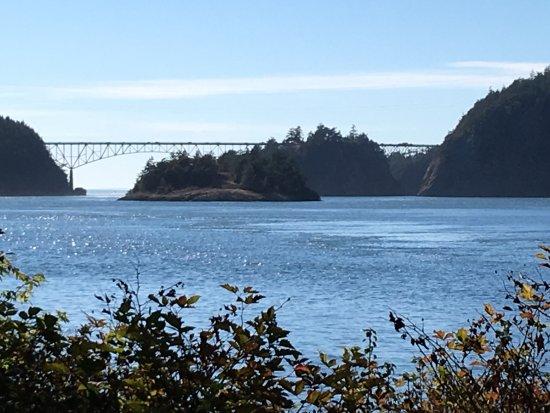 Oak Harbor, WA: view from trail near the marina