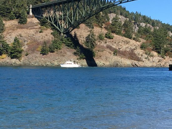 Oak Harbor, Ουάσιγκτον: boat under the bridge