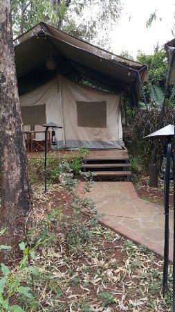 Wildebeest Eco Camp: 20160902_105238_large.jpg