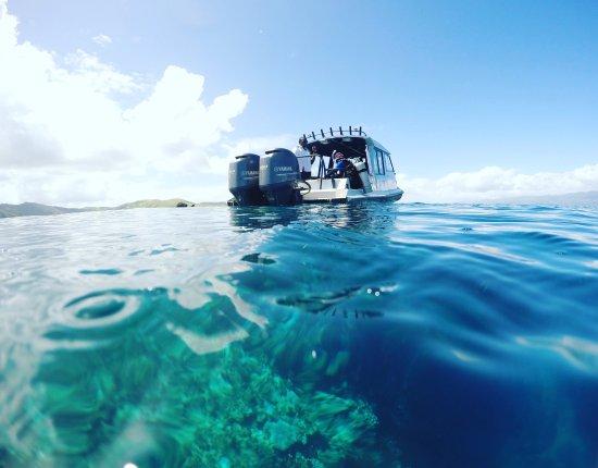 Paradise Taveuni: photo8.jpg