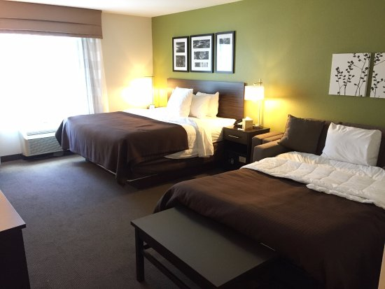 Marshall, MN: 1 kind bet (sofa open to bed)