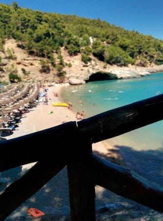 Residence I Delfini di Pugnochiuso: IMG_20160803_144557_large.jpg