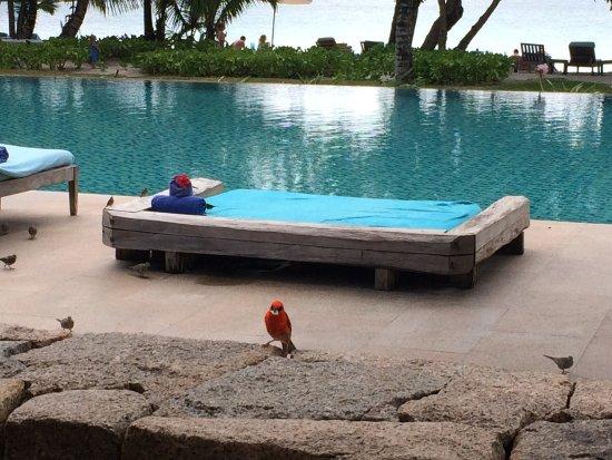 Zdjęcie Four Seasons Resort Seychelles