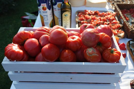 Villa Agostoli: tomatoes for our guests