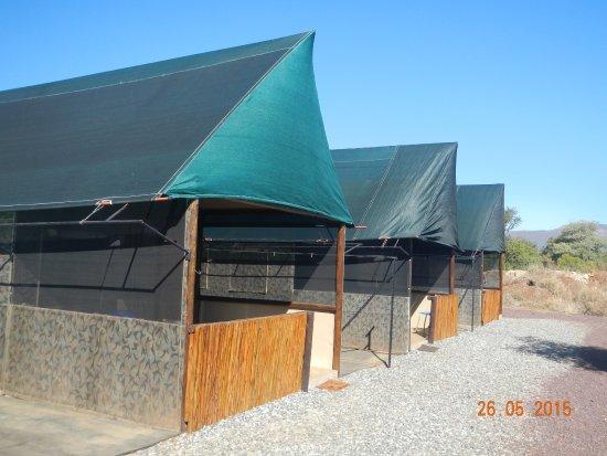 Thabazimbi, Güney Afrika: safari tents available, situated next to predator camps