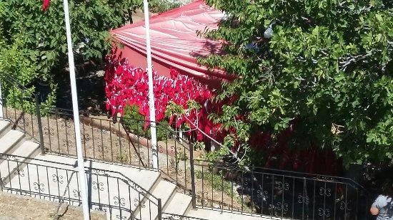 Gallipoli, Turchia: 20160816_114322_large.jpg
