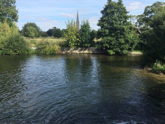 Harnham, UK: photo5.jpg