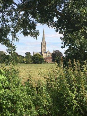 Harnham, UK: photo8.jpg