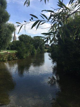 Harnham, UK: photo9.jpg