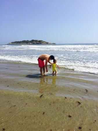 Good Harbor Beach: photo0.jpg