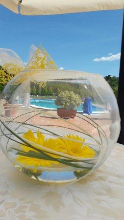 Torricella in Sabina, Italie : Momenti belli...