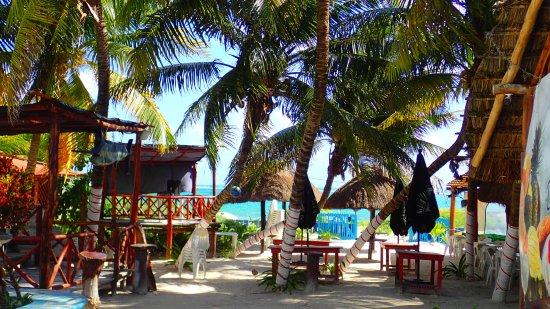 ae86430cb471 Entrée du restaurant la Playita à Puerto morelos - Picture of La ...