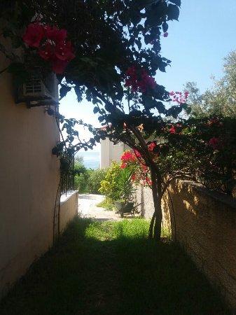 Lourdata, اليونان: Summer Dream