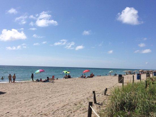 Hallandale Beach: Vista da praia