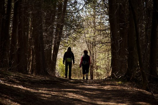 Point Au Roches State Park: Hikers in a wooded area