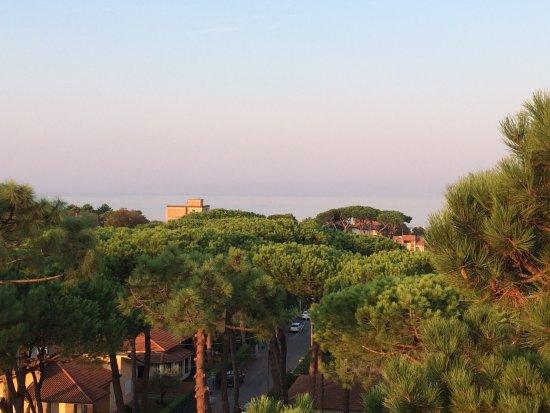 Hotel Venezia: photo0.jpg