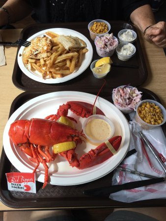York, ME: Lobster fresh from the pond