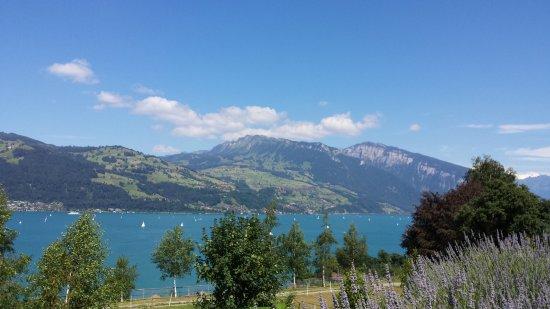 Thun, سويسرا: Von Einigen aus gesehen