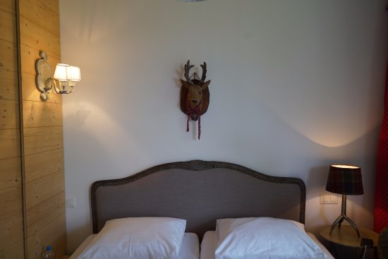 Hamilton Lodge Zweisimmen Photo