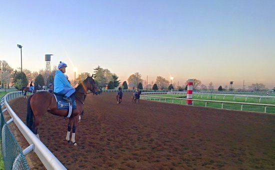 Keeneland The Morning Workouts