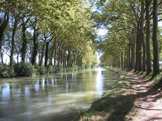 Domaine La Castagne: Canal du Midi