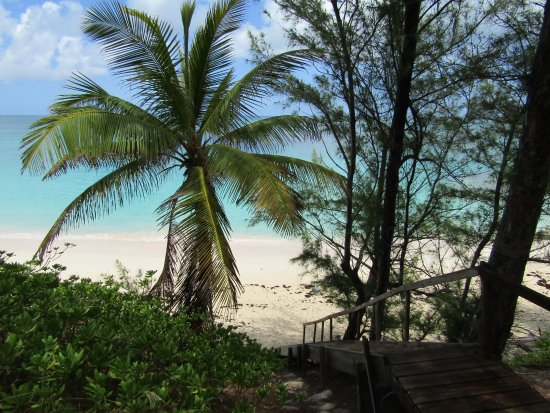 Rock Sound, Eleuthera: The stairs leading to the beach