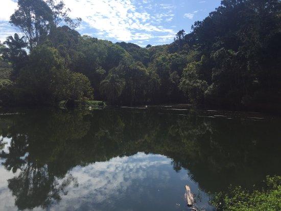 Duranbah, أستراليا: photo5.jpg