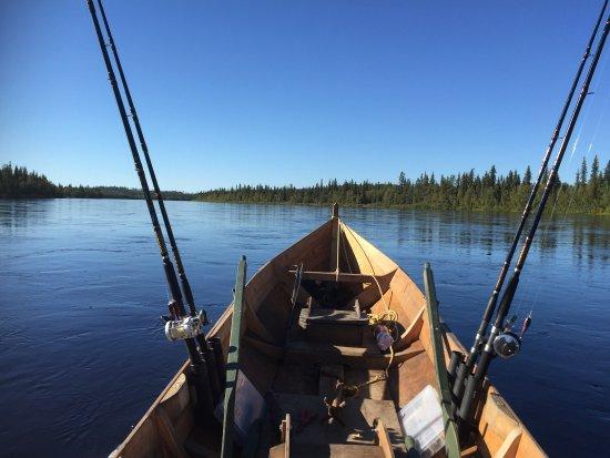 Salmon Finland - Fishing Adventures: Salmon Finland Kalastusmatkat