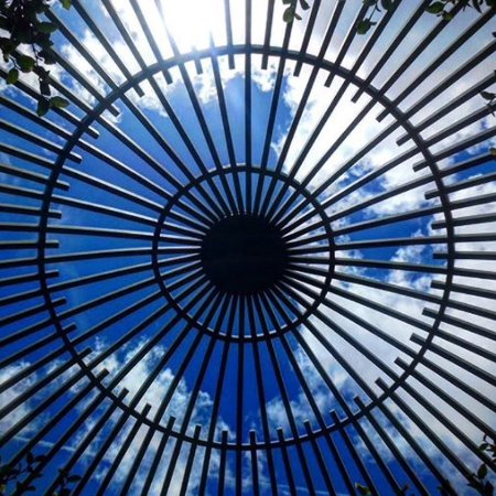Miami, FL: Looking skyward thru one of the small gazebos in one of the gardens.