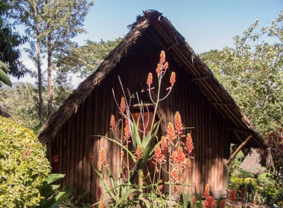 Karama Lodge & Spa : Exterior of the rooms/ huts