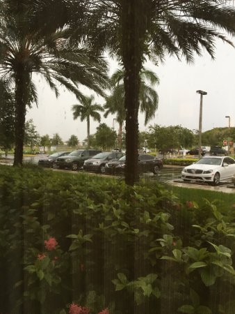 Hyatt Place Ft. Lauderdale Airport & Cruise Port: photo1.jpg