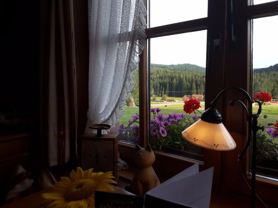 Hotel Peterle : View from dining room