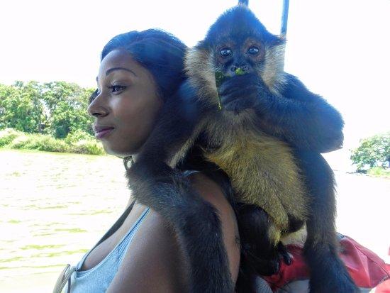 Lake Nicaragua, Nicarágua: Lucy the Monkey on Monkey Island
