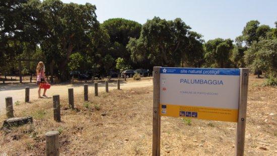 Plage de Palombaggia: parking Gratuit