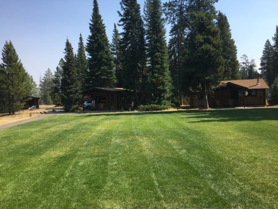 Jenny Lake Lodge: Sitting on our porch looking at the only green grass in 100 miles!