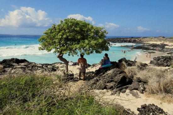 Manini'owali Beach (Kua Bay): Pláž