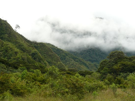 El Refugio de Intag Cloud Forest Lodge: View from Lodge