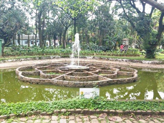 Resultado de imagem para Jardim Botânico santos