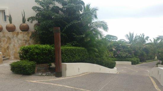 Bilde fra La Cruz de Huanacaxtle