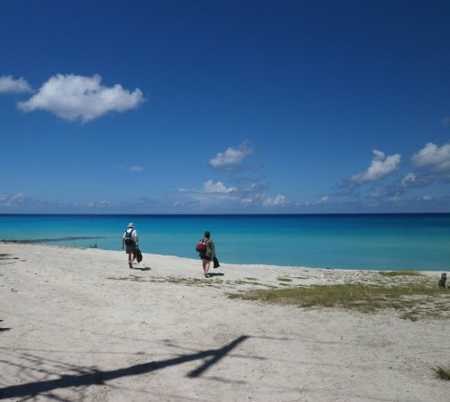Bimini: Endless beach
