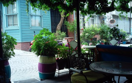 Cheers Hostel: Colorful garden :)